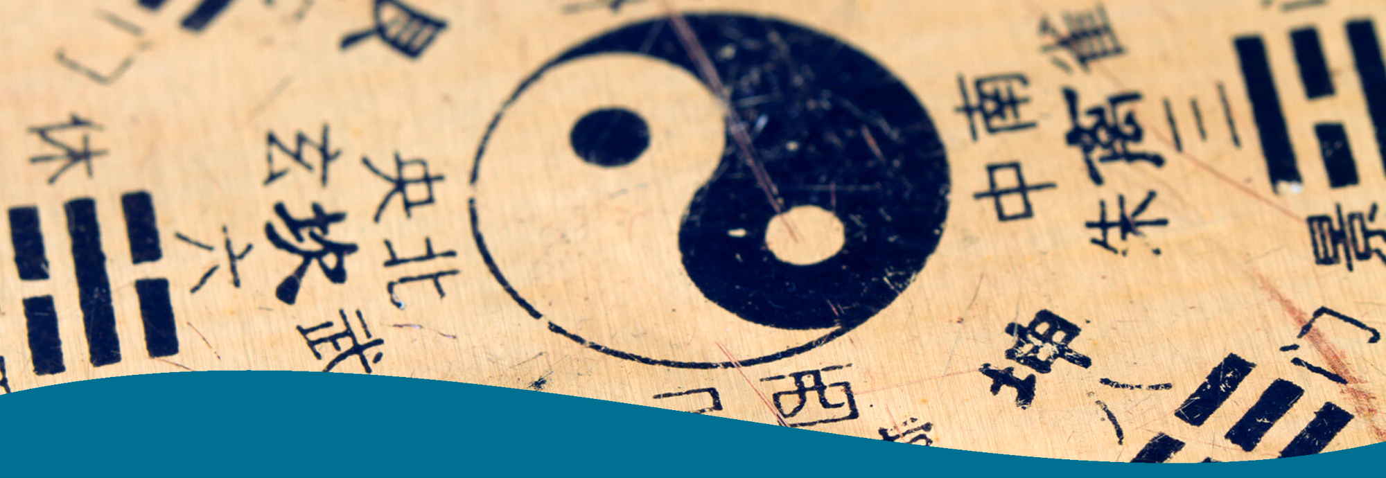 composizione formazione wang academy