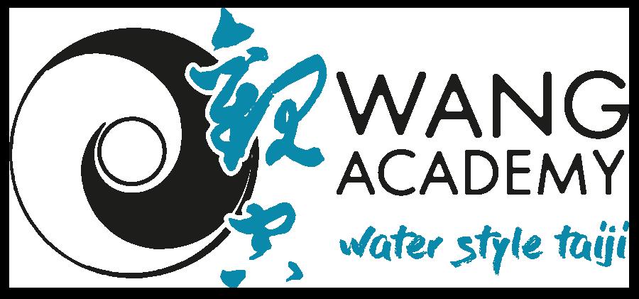 logo wang academy no onda