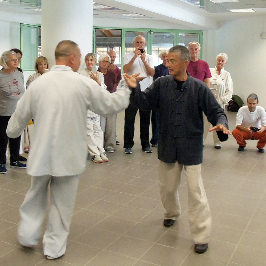 Lin e Wang academy