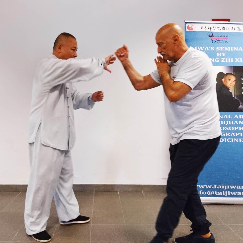pratica taiji wang academy