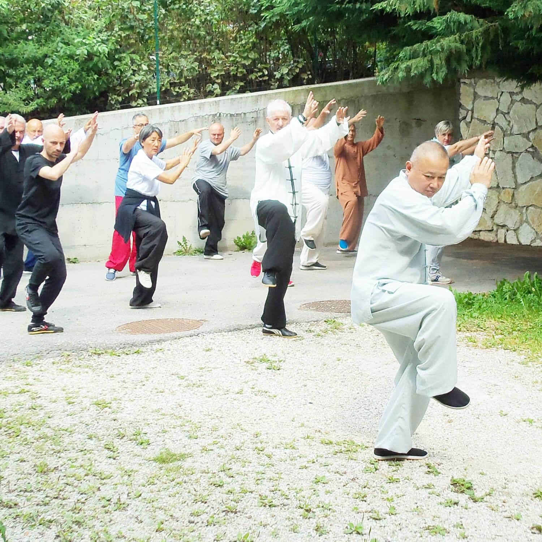 maestro ling seconda forma wang academy