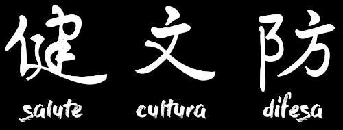 salute cultura difesa calligrafia maestro wang